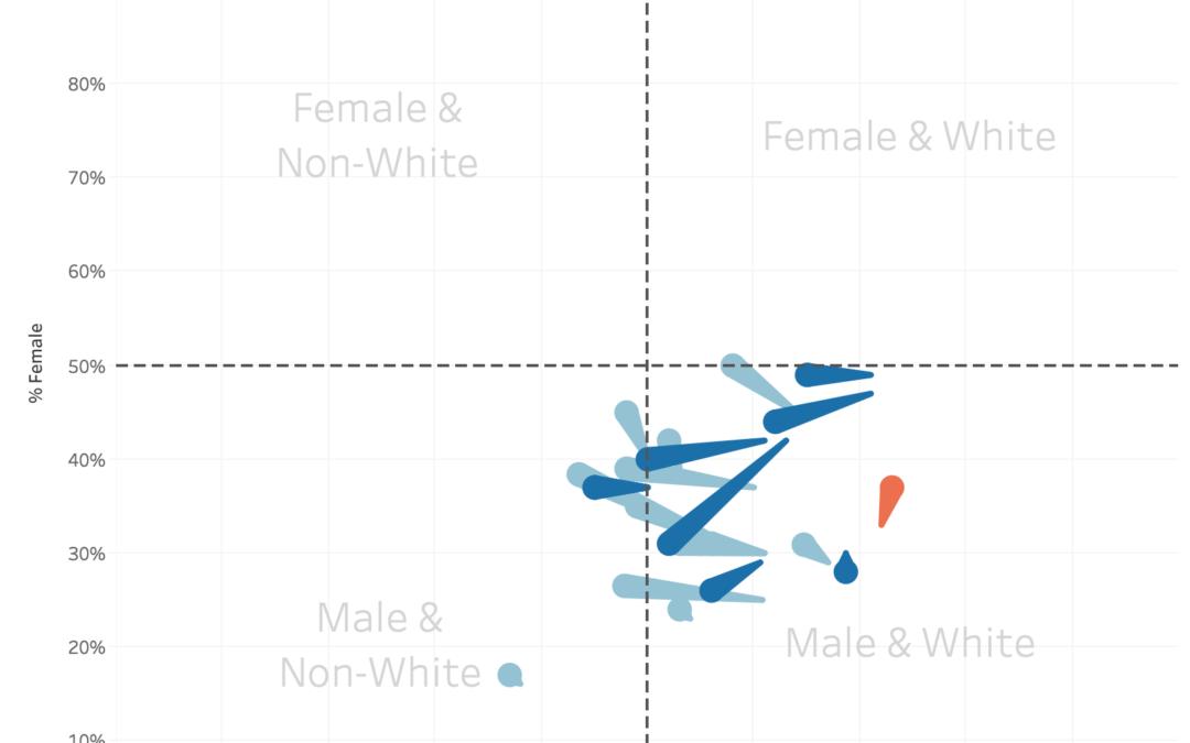 Speed Vizzing: Diversity in Tech